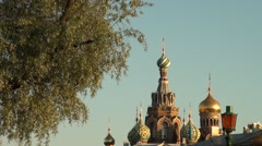 Russia Saint-Petersburg 2015 Church of the Savior on Blood and tree Stock Footage