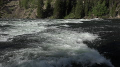 Yellowstone River beautiful powerful rapids in forest 4K Stock Footage