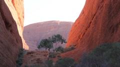Kata Tjuta The Olgas Australian Landmark Outback Red Desert Landscape Stock Footage