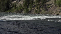 Yellowstone River water rapids mountain valley bugs flying 4K Stock Footage