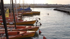 Boats moored in the port of Jaffa Stock Footage