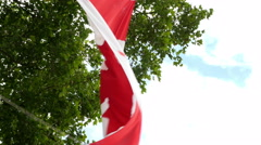 Canadian Flag waving in a windy day Stock Footage