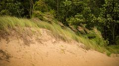 Sand Hills at Warren Dunes Park - stock photo