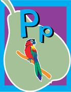 Flash Card Letter P - stock illustration