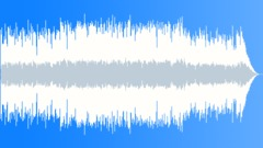 Fusion Illusion - acoustic alternative rock Arkistomusiikki