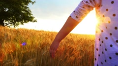 Hand in Wheat - stock footage