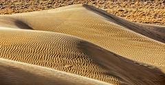 Dunes of Thar Desert. Sam Sand dunes, Rajasthan, India Stock Photos