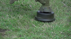 Close-up lawn mower triming grass Stock Footage