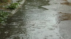 Raining on Puddle of Water Stock Footage