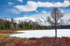Altai Lake  Kodelyukyol Stock Photos