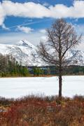 Altai Lake  Kodelyukyol - stock photo