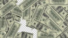 Dollar bills sticking to the screen. Animations in full HD. Stock Footage