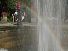 Black male walking on a background of a rainbow in a park Stock Footage