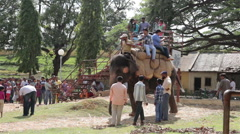 Tourists ride on an elephant and camel on a sunny day. Mysore. Karnataka. India. Stock Footage