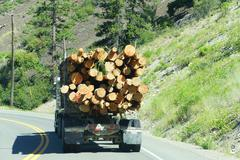 Logging truck on mountain highway - stock photo