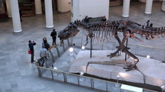 People viewing Tyrannosaurus Rex on display at Field Museum Chicago 4k Stock Footage