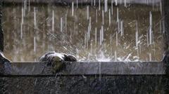 Paloma Dead water falls into a fountain, Córdoba Stock Footage
