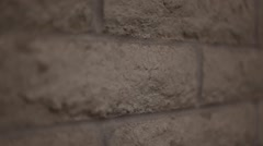 Brick wall - dolly, close up shot Stock Footage