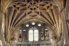Stone Arch Stained Glass Statues New Salamanca Cathedral Spain Stock Photos