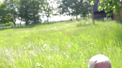 Senior Couple Sitting In Summer Field Blowing Dandelion Stock Footage