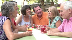 Group Of Senior Friends Enjoying Cocktails In Bar Together Stock Footage
