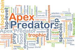 Apex predator background concept Stock Illustration