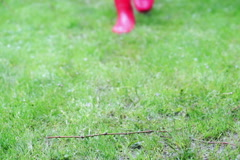 Woman walking on the grass and wearing red rain boots Stock Footage
