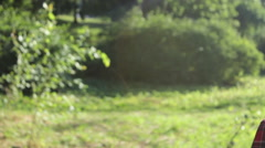 Girl talking on mobile phone in park. Moving camera Stock Footage