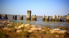 Piles of old wooden bridge on sea coast Stock Footage