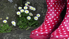 4K red boots on outdoor staircase, wiggling feet next to daisies Stock Footage