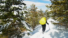Tourist went off the trail in the winter forest Stock Footage