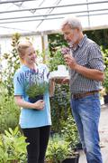 Male Customer Asking Staff For Plant Advice At Garden Center - stock photo