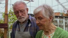 Elderly couple smelling a plant, Stockholm, Sweden. Stock Footage