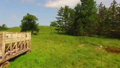 Herd of Cows, Cattle, Grazing in Tranquil Hillside Pasture - stock footage