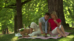 A couple having a picnic in a park, Stockholm, Sweden. - stock footage