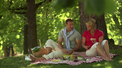 A couple having a picnic in a park, Stockholm, Sweden. Stock Footage
