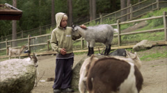 Children and goats at the zoo, Sweden. Stock Footage