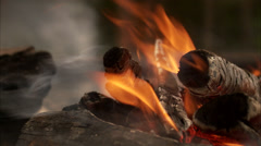 A camp fire, Sweden. Stock Footage