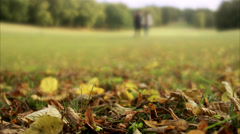A man and a woman in a park an autumn day, Sweden. Stock Footage