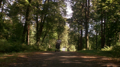 Father walking in a park with a pram a sunny day, Sweden. Stock Footage