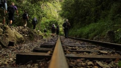 Tourists hiking in forest Stock Footage