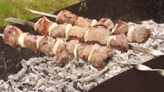 Close-up of roasted meat on a skewer on the grill Stock Footage
