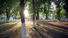 Sunny park afternoon. Sun's rays shine through the trees Stock Footage