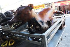roasted vietnam dog - stock photo