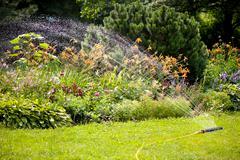 Watering abloom garden - stock photo