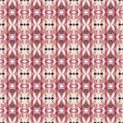 Stock Illustration of Blosssom of Afgekia mahidolae seamless