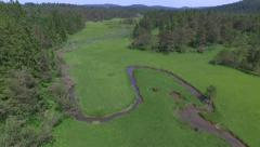 AERIAL: Flying over small river bends through the green meadow valley - stock footage