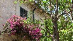 Spain Mallorca Island various 030 village Estellencs still life house and tree Stock Footage
