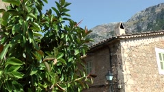 Spain Mallorca Island various 045 old house and a gum tree in village Deia Stock Footage