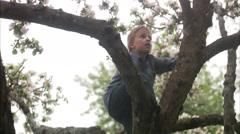 A boy waving from a tree, Sweden. - stock footage